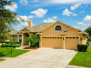 607  Citrus Wood Lane  , Valrico, FL 33594 (MLS #T2718354) :: The Duncan Duo & Associates