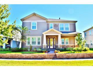 5308  Fishhawk Ridge Drive  , Lithia, FL 33547 (MLS #T2722373) :: The Duncan Duo & Associates
