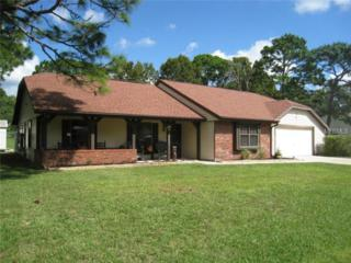 12289  Trout Circle  , Spring Hill, FL 34609 (MLS #T2723687) :: Premium Properties Real Estate Services