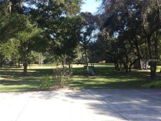 1411  Kingsway Road  , Brandon, FL 33510 (MLS #T2726433) :: The Duncan Duo & Associates