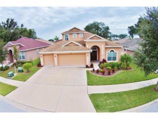 10124  Caraway Spice Avenue  , Riverview, FL 33578 (MLS #T2727783) :: The Duncan Duo & Associates