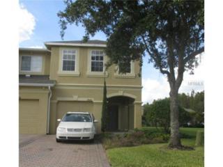 17533  Stinchar Drive  , Land O Lakes, FL 34638 (MLS #T2727817) :: Exit Realty Lakeland