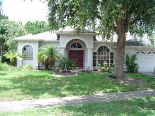 10028  Colonnade Drive  , Tampa, FL 33647 (MLS #T2730346) :: The Duncan Duo & Associates