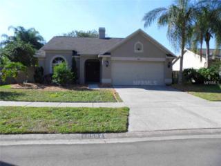 Tampa, FL 33647 :: Premium Properties Real Estate Services
