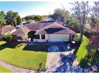 3039  Oak Hill Road  , Clearwater, FL 33759 (MLS #T2737163) :: The Lockhart Team