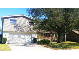 55  Harbor Woods Circle  , Safety Harbor, FL 34695 (MLS #T2740779) :: The Lockhart Team
