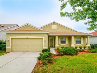 11415  Bridge Pine Drive  , Riverview, FL 33569 (MLS #T2743176) :: The Duncan Duo & Associates