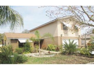 2309  Knoll Avenue N , Palm Harbor, FL 34683 (MLS #T2743252) :: The Lockhart Team