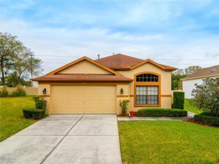 9309  Creek Side Court  , Hudson, FL 34669 (MLS #T2743769) :: The Duncan Duo & Associates