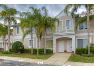 18173  Paradise Point Drive  , Tampa, FL 33647 (MLS #T2747727) :: KELLER WILLIAMS CLASSIC III