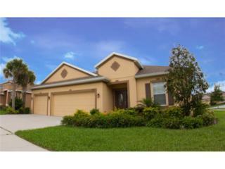 10112  Holland Road  , Riverview, FL 33578 (MLS #T2748598) :: KELLER WILLIAMS CLASSIC III