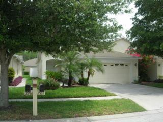 2912  Torrance Drive  , Land O Lakes, FL 34638 (MLS #T2752586) :: KELLER WILLIAMS CLASSIC III