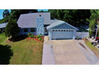 7005  Fountain Avenue  , Tampa, FL 33634 (MLS #T2756463) :: Revolution Real Estate