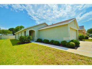 10239  Avelar Ridge Drive  , Riverview, FL 33578 (MLS #T2758879) :: The Duncan Duo & Associates