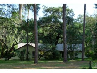 3212  Little Road  , Valrico, FL 33596 (MLS #T2759317) :: Revolution Real Estate