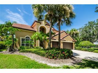 9670  Maypan Place  , Seminole, FL 33777 (MLS #U7708651) :: The Lockhart Team