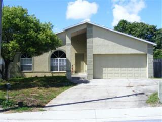 12587  Park Boulevard  , Seminole, FL 33776 (MLS #U7708708) :: The Duncan Duo & Associates