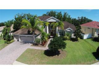 1650  Canopy Oaks Boulevard  , Palm Harbor, FL 34683 (MLS #U7711032) :: Exit Realty Central