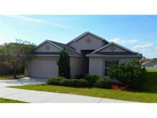 311  Red Kite Drive  , Groveland, FL 34736 (MLS #U7713291) :: Revolution Real Estate