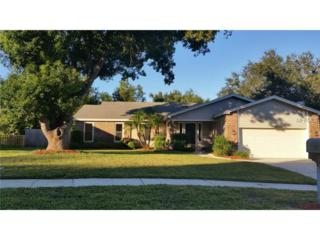 3109  Lake Valencia Lane E , Palm Harbor, FL 34684 (MLS #U7714493) :: Team Pepka