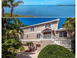 2107  Alexis Court  , Tarpon Springs, FL 34689 (MLS #U7717213) :: Revolution Real Estate