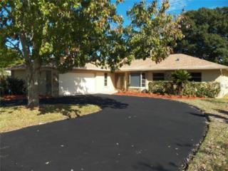 740  Hickory Lane  , Palm Harbor, FL 34683 (MLS #U7717330) :: The Lockhart Team