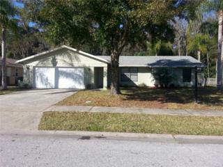 541  Lakeview Drive  , Oldsmar, FL 34677 (MLS #U7719872) :: The Lockhart Team