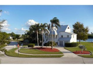 2118  Harbour Watch Drive  , Tarpon Springs, FL 34689 (MLS #U7724274) :: The Lockhart Team