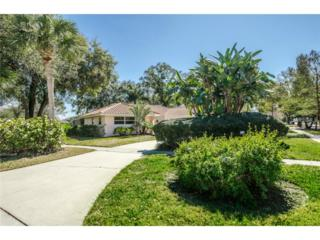 809  Lake Forest Road  , Clearwater, FL 33765 (MLS #U7726060) :: The Lockhart Team
