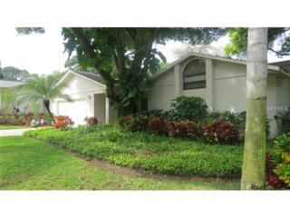 2521  Gulfbreeze Circle  , Palm Harbor, FL 34683 (MLS #U7730846) :: The Lockhart Team