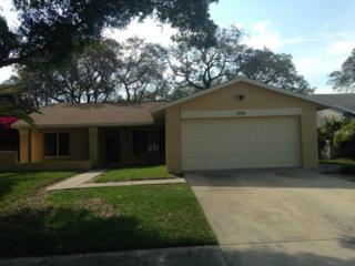 1912  Hastings Drive  , Clearwater, FL 33763 (MLS #U7731991) :: Revolution Real Estate
