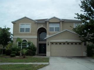 9606  Baton Rouge Lane  , Land O Lakes, FL 34638 (MLS #W7602738) :: The Duncan Duo & Associates