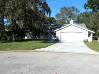 8809  Avondale Lane  , Hudson, FL 34667 (MLS #W7603584) :: Team Pepka