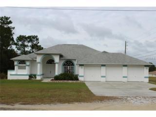 10391  Gypsy Avenue  , Weeki Wachee, FL 34613 (MLS #W7604400) :: Premium Properties Real Estate Services