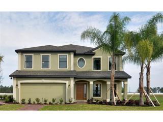 14457  Alistar Manor Drive  , Wimauma, FL 33598 (MLS #W7604414) :: Revolution Real Estate