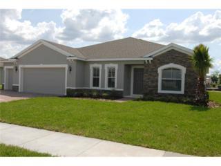 14213  Alistar Manor Drive  , Wimauma, FL 33598 (MLS #W7604418) :: Revolution Real Estate