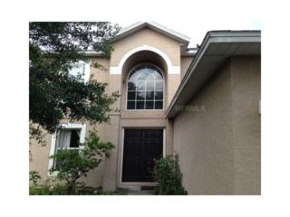 4807  Fiske Circle  , Orlando, FL 32826 (MLS #O5226355) :: Orlando Property Group