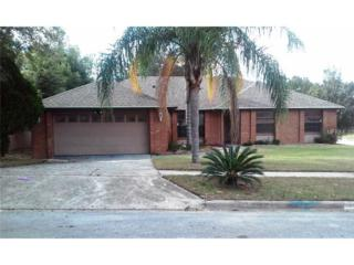 6722  Limpkin Drive  , Orlando, FL 32810 (MLS #O5328154) :: Premium Properties Real Estate Services
