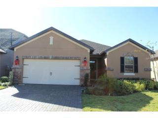515  Cadiz Drive  , Davenport, FL 33837 (MLS #O5332710) :: Orlando Property Group