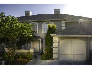 14014  Notreville Way  , Tampa, FL 33624 (MLS #T2631892) :: The Duncan Duo & Associates