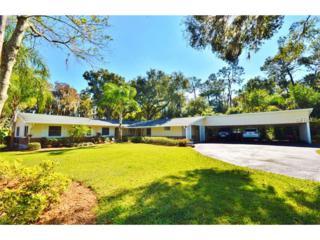 18311  Tomlinson Drive  , Lutz, FL 33549 (MLS #T2727221) :: The Duncan Duo & Associates