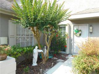 14120  Trouville Drive  , Tampa, FL 33624 (MLS #W7539175) :: The Duncan Duo & Associates