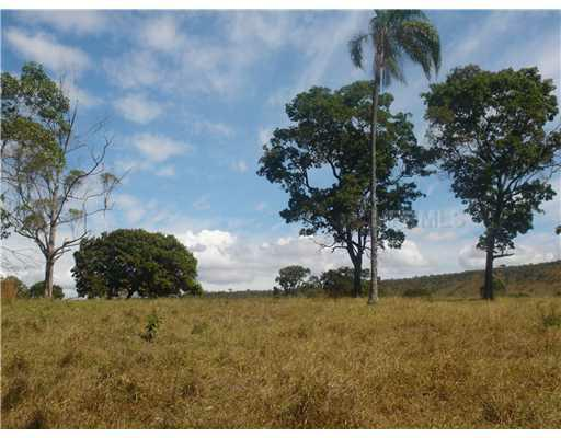 Farm Chaparral: Km90 Mt 242 State Road - Photo 2