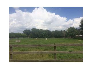 0 SW 173 WY  , Southwest Ranches, FL 33331 (MLS #A1998806) :: The Teri Arbogast Team at Keller Williams Partners SW