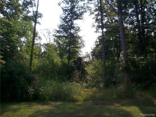 1211  Braeburn Drive  , St Clair, MI 48079 (#214095586) :: Sine and Monaghan Realtors