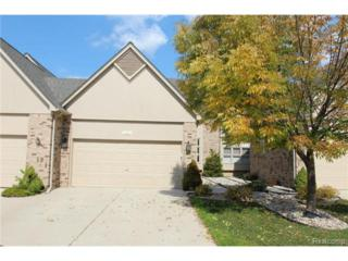 14951  Stoney Brook Drive  , Shelby Twp, MI 48315 (#214111497) :: Sine and Monaghan Realtors