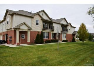 5702  Norway Spruce Drive  42, Shelby Twp, MI 48317 (#214118322) :: Sine and Monaghan Realtors