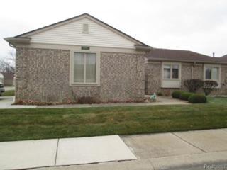 13840  Maple Grove Avenue  , Shelby Twp, MI 48315 (#214123027) :: Sine and Monaghan Realtors