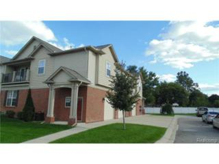 5712  Norway Spruce  , Shelby Twp, MI 48317 (#214124983) :: Sine and Monaghan Realtors