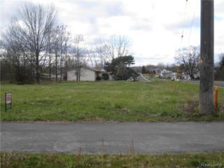 0  River Road  , Saint Clair Twp, MI 48079 (#214125254) :: Sine and Monaghan Realtors
